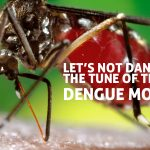 Aedes Aegypti, Carrier of Dengue Virus